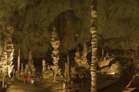 Grotte de l'Aven d'Orgnac